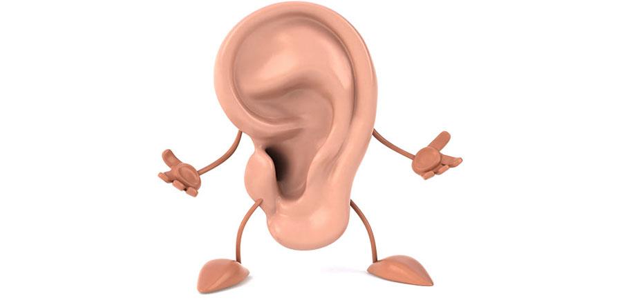 گوش خارجی و آناتومی آن